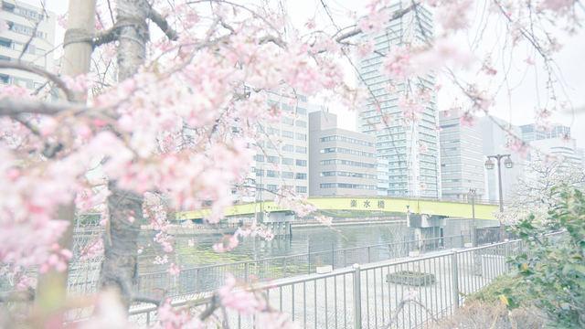 株式会社花咲爺さんズ